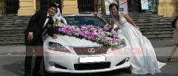 Thue-xe-cuoi-Lexus-IS250c-mui-tran (3)