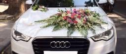thue xe cuoi audi a6, Cho thuê xe cưới Audi a6