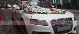 thue-xe-cuoi-Audi-S5-sieu-sang (7)