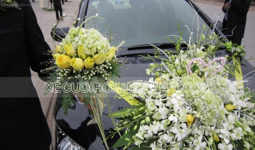 thue-xe-cuoi-Honda-Civic (10)