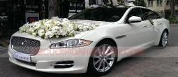 thue-xe-cuoi-Jaguar-jxl (4)