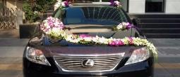thue-xe-cuoi-Lexus-LS460 (1)